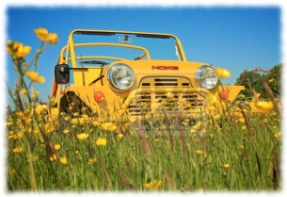 Yellow Mini Moke